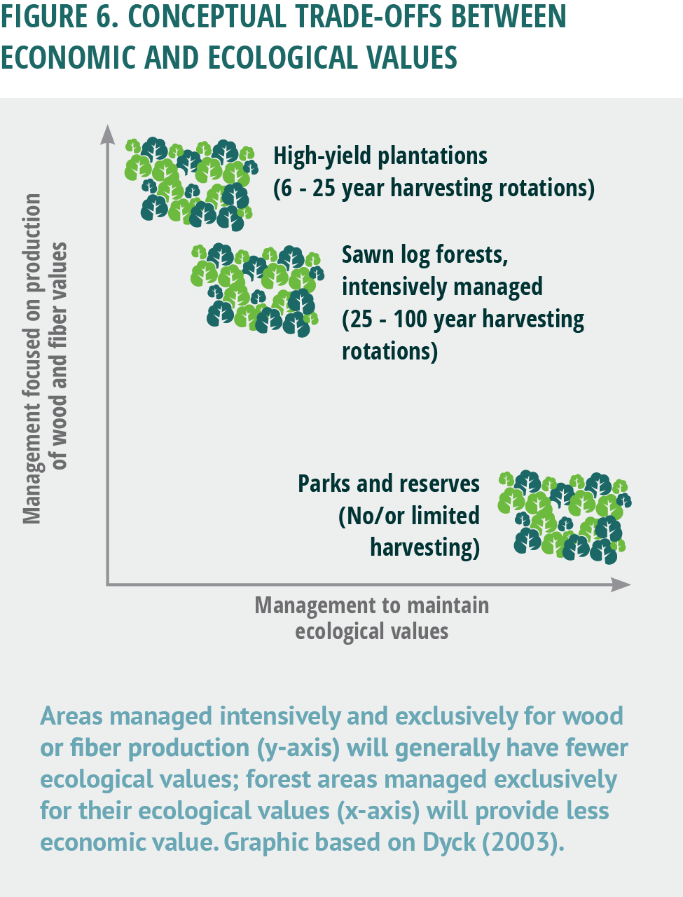 Have Forests Been Sustainably Managed